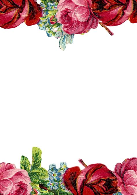 free rose borders - Clipground