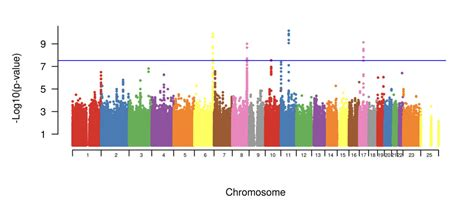 An Introduction To Genome-Wide Association Study (GWAS)